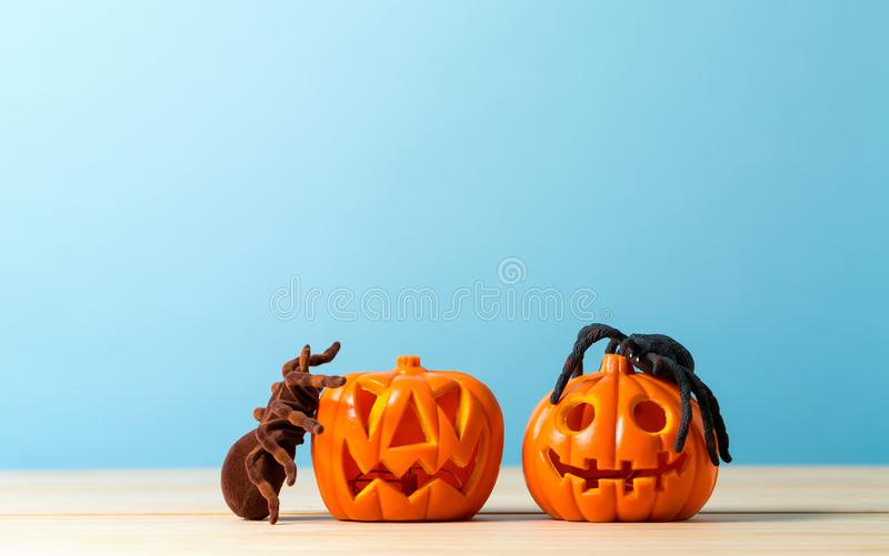 Halloween pumpkins with spider. On a blue background stock image