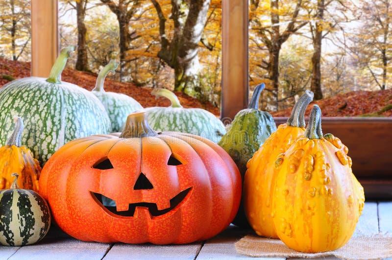 Halloween pumpkins. royalty free stock photos