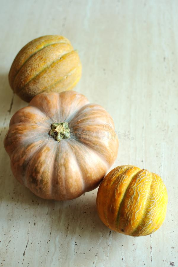 Halloween punpkin and melons background with copy space. Selective focus and bokeh. royalty free stock photography