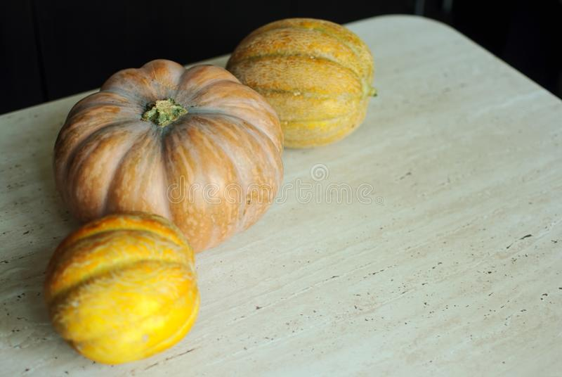 Halloween punpkin and melons background with copy space. Selective focus and bokeh. royalty free stock photo