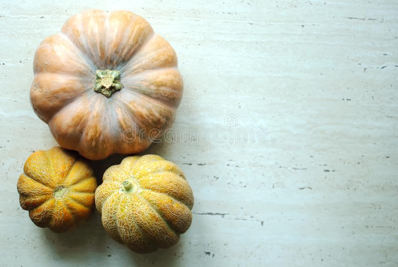 Halloween punpkin and melons background with copy space. Selective focus and bokeh. royalty free stock photos