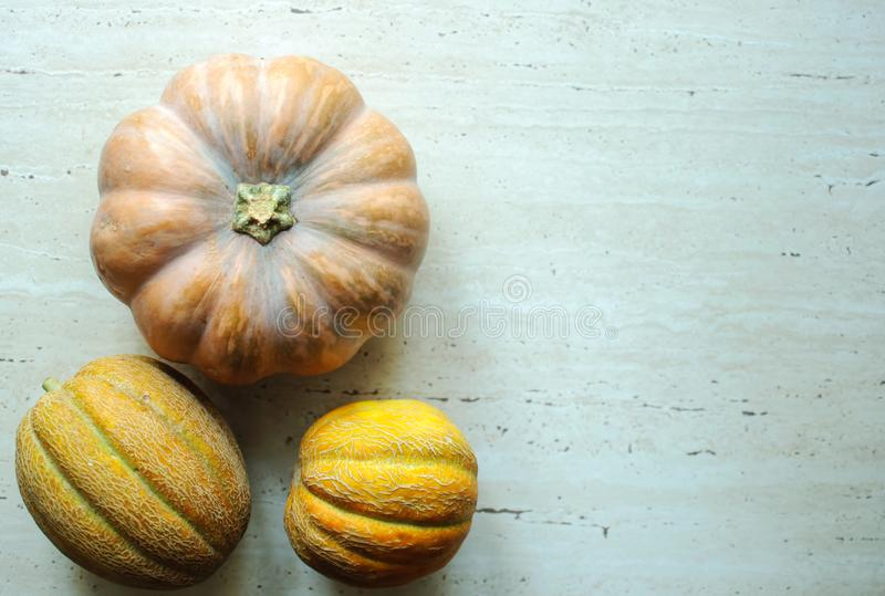Halloween punpkin and melons background with copy space. Selective focus and bokeh. royalty free stock images