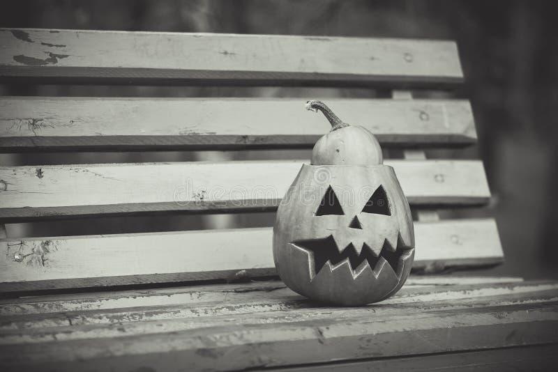 Halloween Rebecca 36 de pompoen ligt op een bank stock foto's