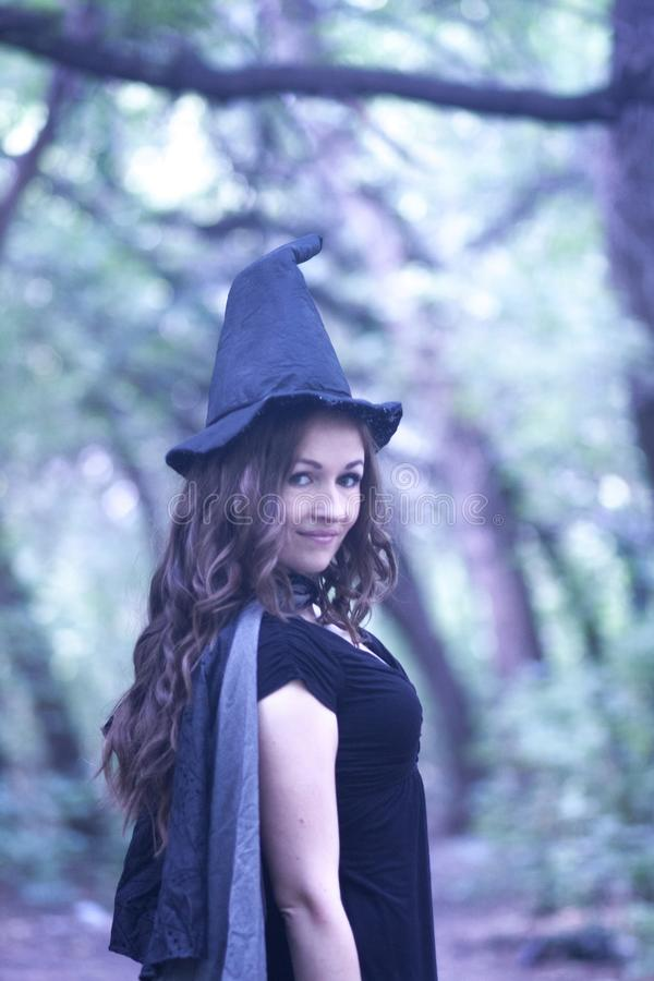 Halloween retrato da feiticeira imagem de stock
