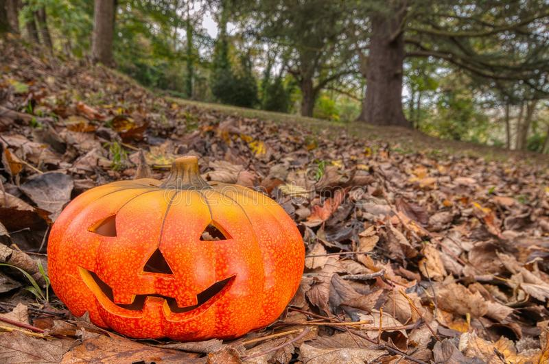 Halloween scary pumpkin with a smile royalty free stock images