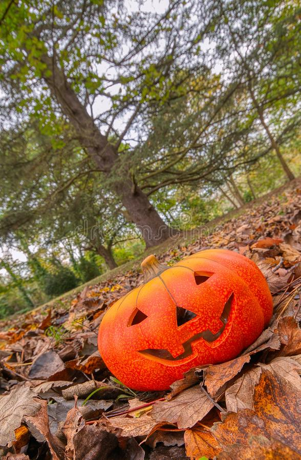 Halloween scary pumpkin with a smile royalty free stock photos