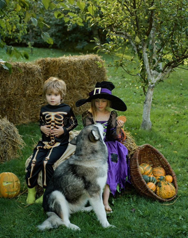 Halloween Scene with cute children. Trick-or-treating. Happy Halloween, cute toddler girl and boy playing outdoors royalty free stock images