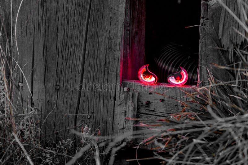 Halloween-Schädel und -dekorationen lizenzfreie stockfotos