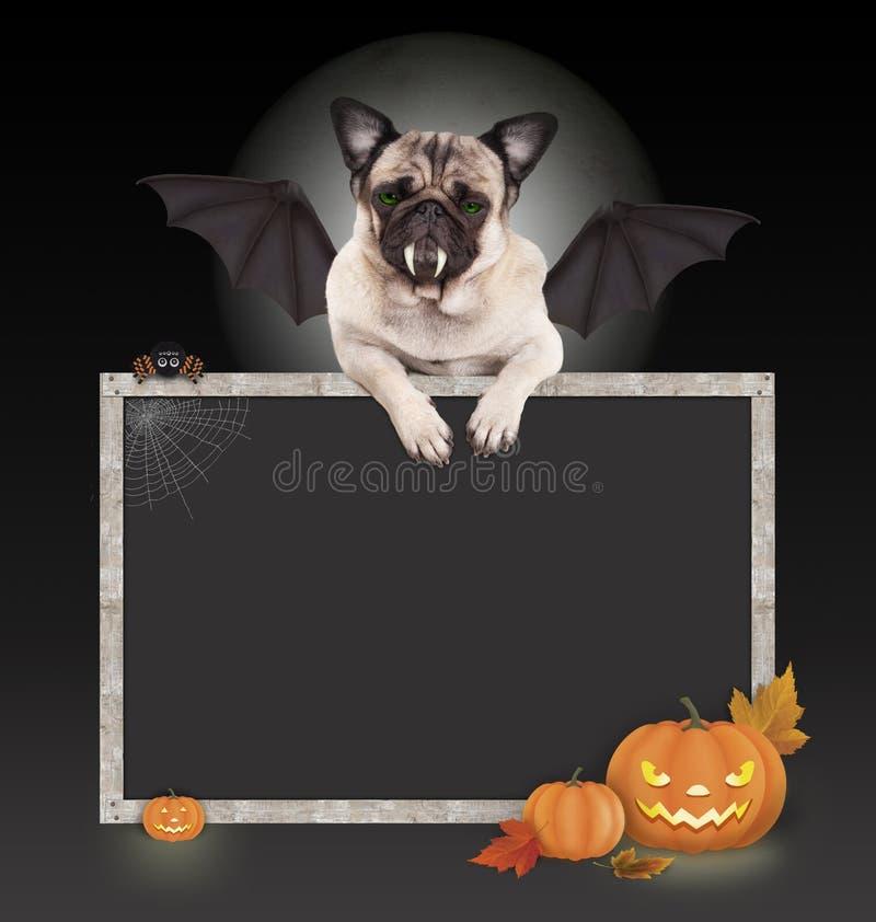 Halloween-Schläger Pughund mit Flügeln und Tatzen auf leerer Tafel unterzeichnen, mit Kürbislaterne lizenzfreie stockfotografie