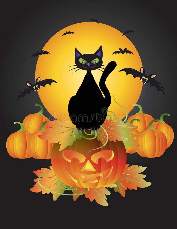 Halloween-schwarze Katze auf geschnitzter Kürbis-Abbildung stock abbildung