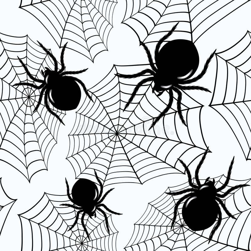 Download Halloween Seamless  With  Spiders And A Web Stock Vector - Image: 5877692