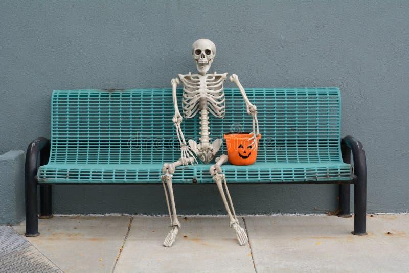 Halloween-Skelet stock afbeelding