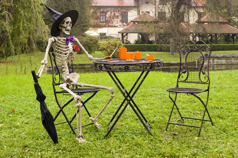 Halloween-skeletdecoratie in tuin stock foto