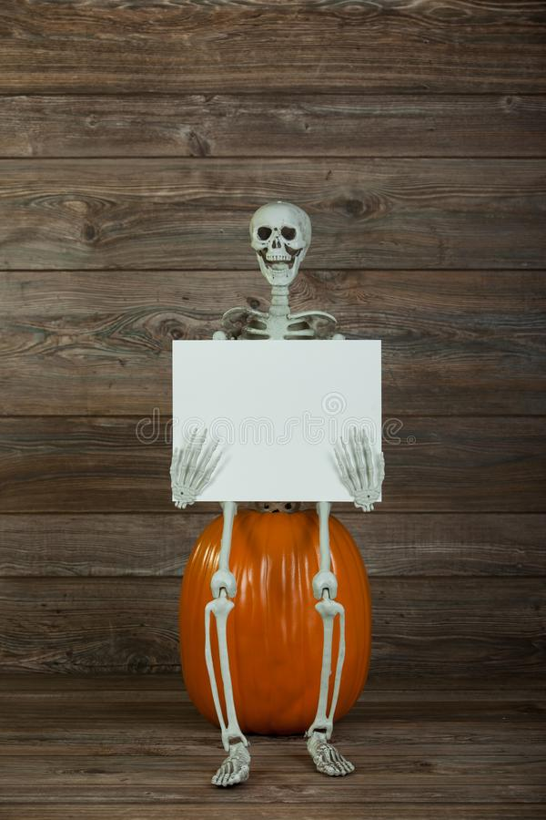 Halloween skeleton holding blank sign. Halloween skeleton sitting on a pumpkin holding a blank sign on wood background with copy room stock photos
