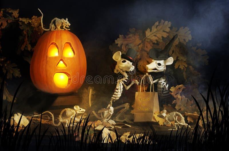Halloween Skeleton Rats stock photography