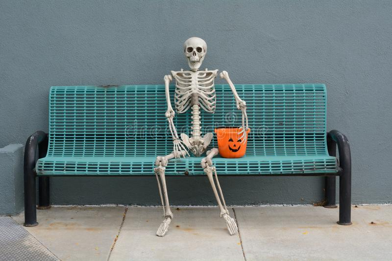 Halloween Skeleton. Sitting on bench with jack o`lantern trick or treat bucket stock image