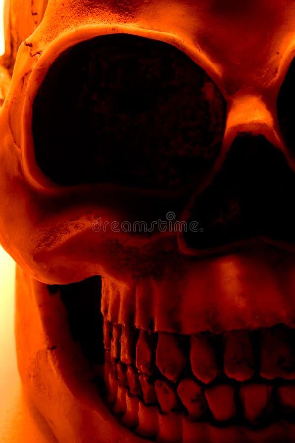 Halloween Skull. In orange light royalty free stock photography
