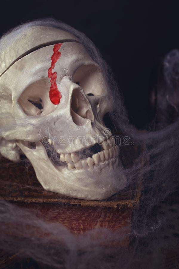 Halloween - skull with blood stock photography