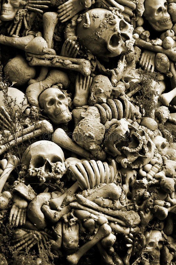 Download Halloween Skulls And Bones stock photo. Image of objects - 6904942