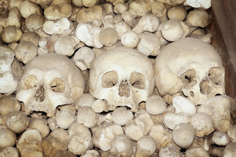 Halloween skulls and bones stock image