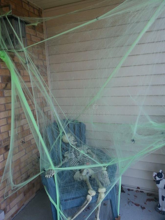 Halloween-Spinnennetzdekor stockfoto