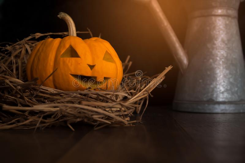 Halloween still life with pumpkins on wooden floor royalty free stock photos