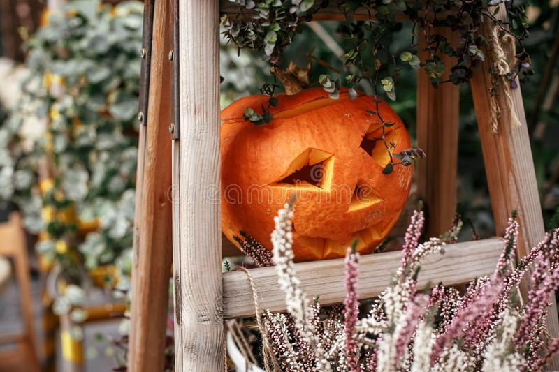 Halloween street decor. Jack o lantern pumpkins and flowers in city street, holiday decor of garden and buildings. Autumn market royalty free stock image