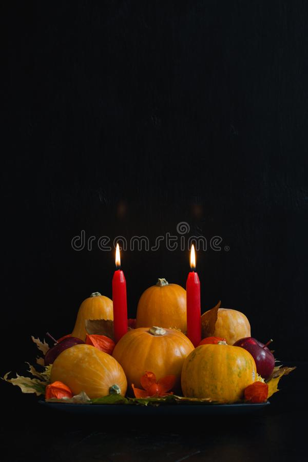 Halloween thanksgiving autumn still life composition pumpkins ap royalty free stock photos