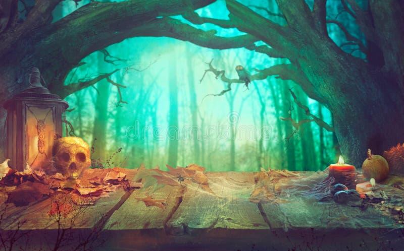 Halloween-Thema mit Kürbisen und dunklem Wald gespenstisches Halloween stockbilder
