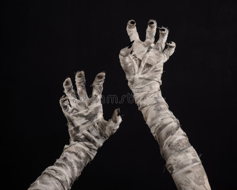 Halloween theme: terrible old mummy hands on a black background. Studio stock images