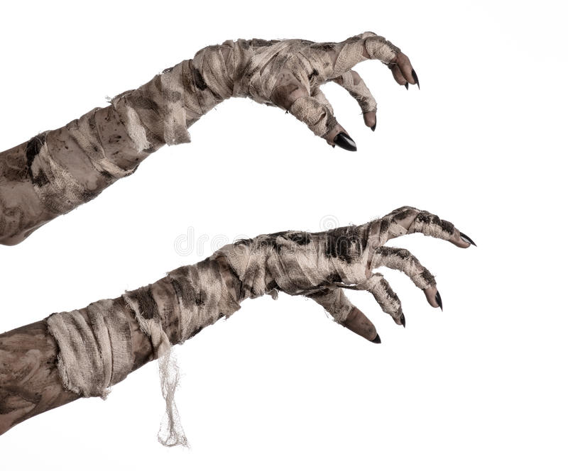 Halloween theme: terrible old mummy hands on a white background. Studio stock image