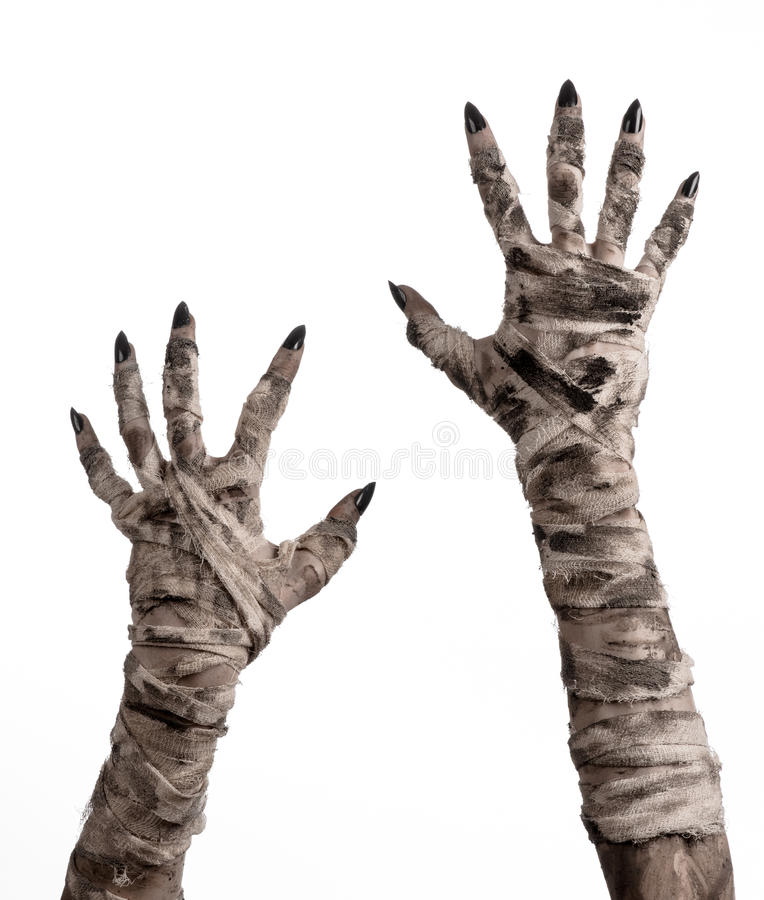 Halloween theme: terrible old mummy hands on a white background. Studio royalty free stock photography