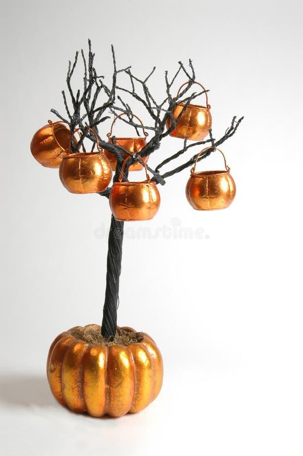 halloween tree royaltyfri foto