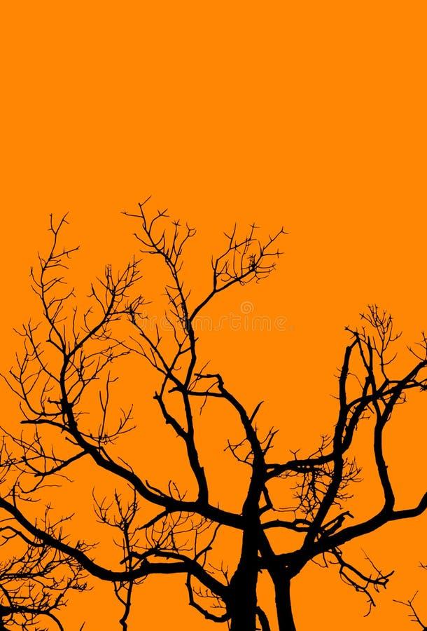 Halloween Tree on Orange royalty free stock images