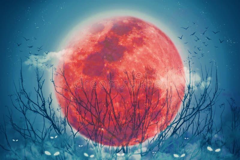 Halloween-vakantie-achtergrondconcept, Red full moon verlicht 's nachts en horror-ogen van hefboompompoen in de mist vector illustratie