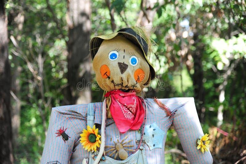 Halloween-vogelverschrikker op een gebied stock foto