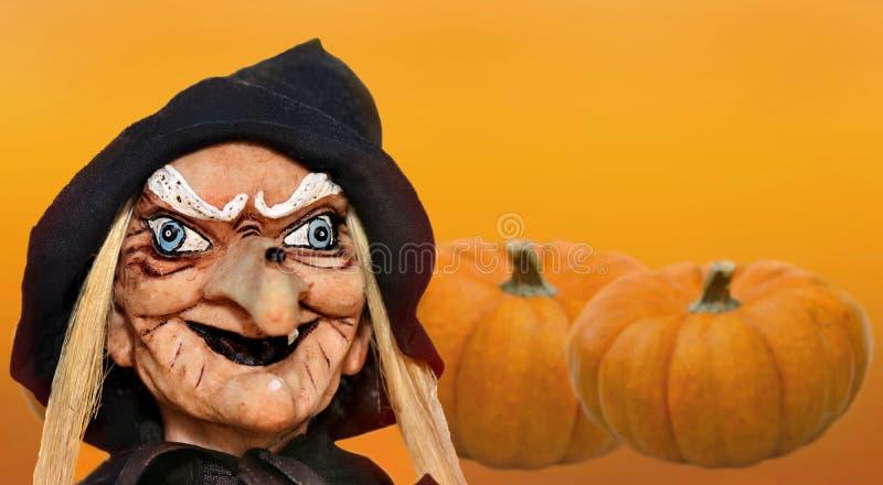 Halloween witch doll on decorative pumpkins  backgound. Halloween witch head of a witch  doll on decorative pumpkins  backgound royalty free stock image