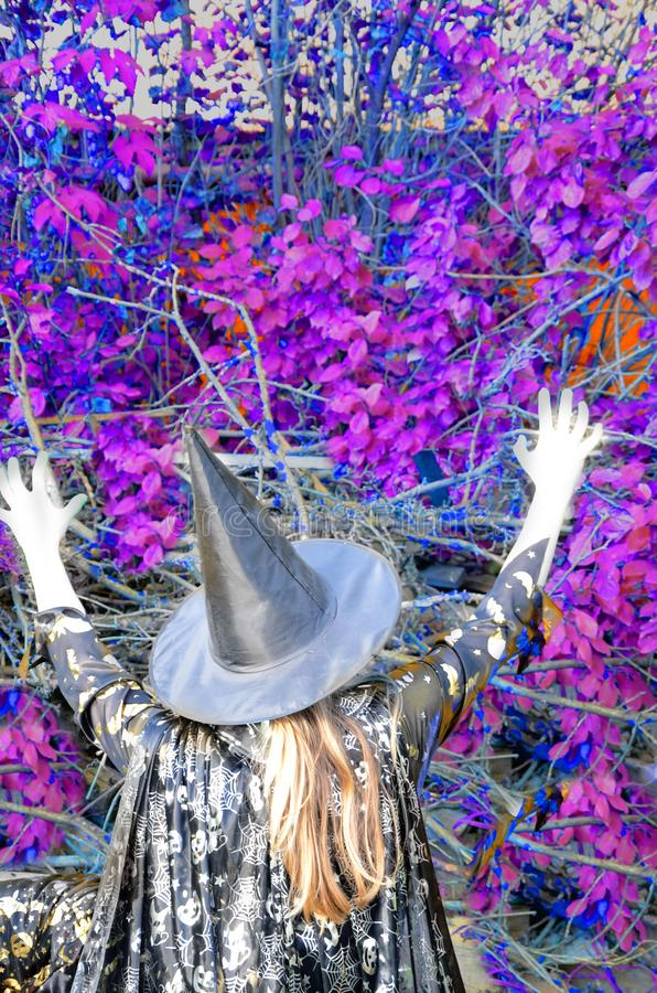 Halloween Witch with a magic in a dark forest. Beautiful young woman in witches hat and costume holding magic light in. Halloween Witch with a magic in a dark royalty free stock photography