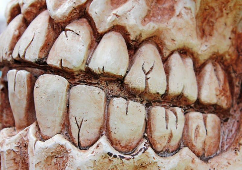 Halloween-Zähne stockbilder