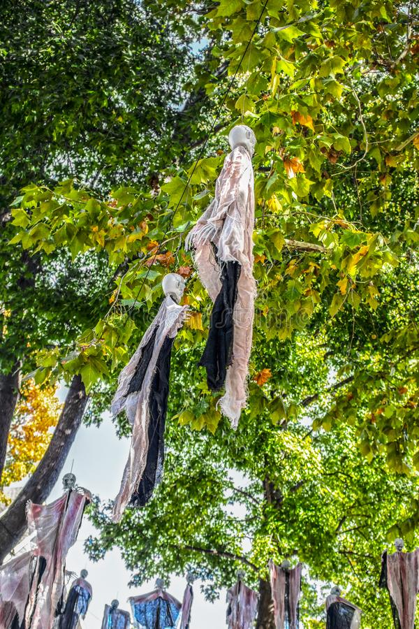 Halloween zombie decorations hanging from trees on an American residential street stock image