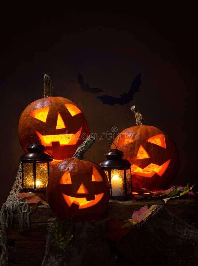 Halloween, zucche e pipistrelli illustrazione vettoriale