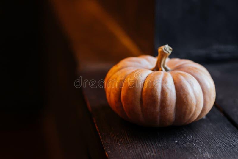 Halloweenowa bania na drewnianym tle zdjęcia royalty free