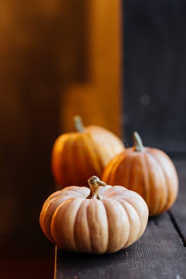 Halloweenowa bania na drewnianym tle fotografia royalty free