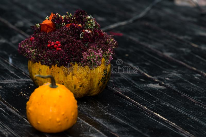 Halloweenowa dyniowa dźwigarka i bania z kwiatami na ciemnym drewnianym b obraz royalty free