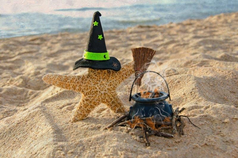 Halloweenowa rozgwiazda z czarownica kapeluszem fotografia stock