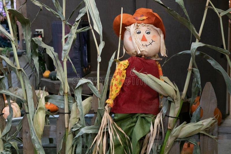 Halloweenowa strach na wróble dekoracja obrazy stock
