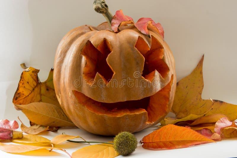 Halloweenowa straszna twarzy bania na białym tle obrazy royalty free
