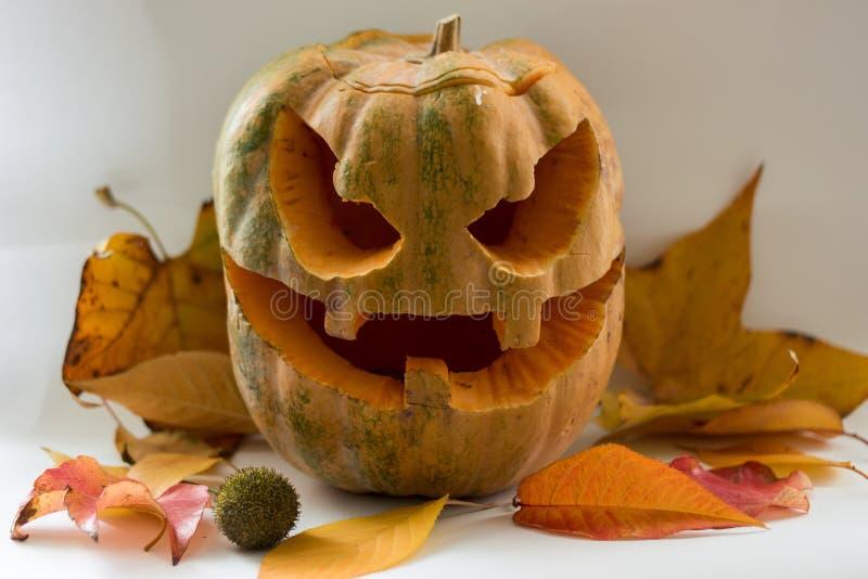 Halloweenowa straszna twarzy bania na białym tle obrazy stock