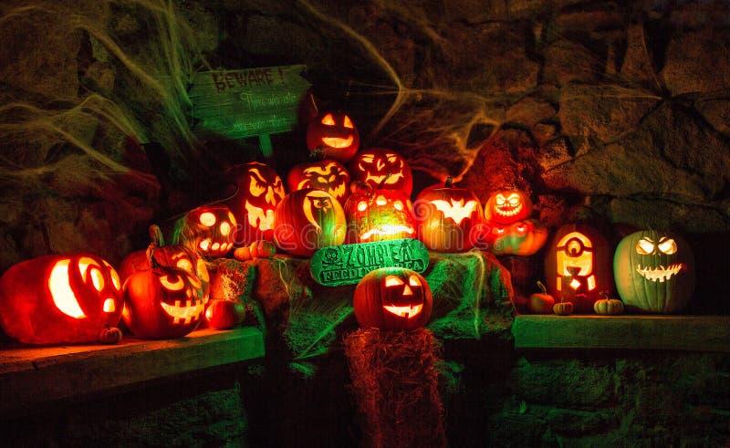 Halloweenowy dyniowy pokaz obrazy stock