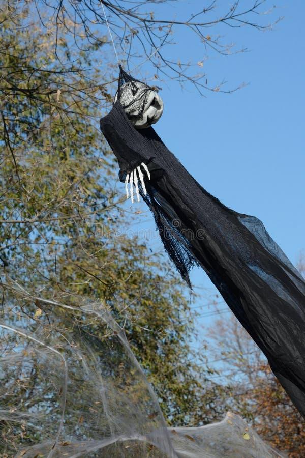 Halloweenowy gul zdjęcia stock